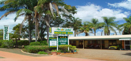 Avocado Motor Inn - Tourism Adelaide