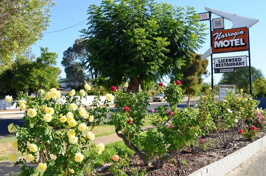 Narrogin Motel - Tourism Adelaide