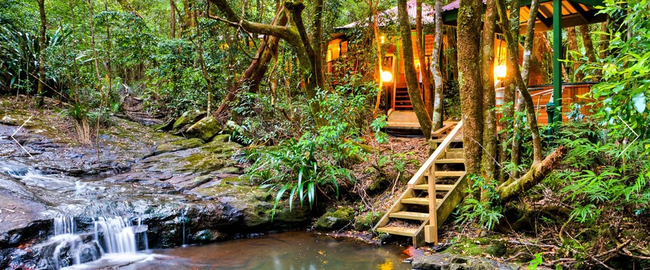 The Mouses House - Rainforest Retreat - Tourism Adelaide