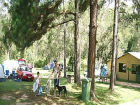 Glasshouse Mountains Holiday Village - Tourism Adelaide