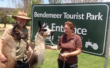 Bendemeer Tourist Park - Tourism Adelaide