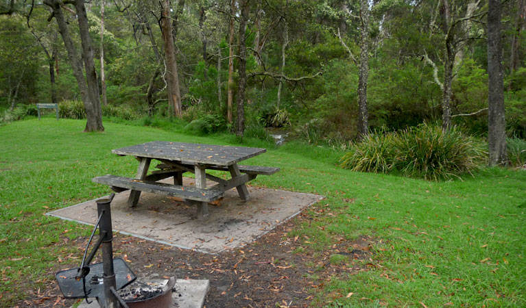 Chaelundi campground - Tourism Adelaide