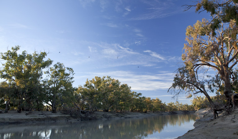 Darling River campground - Tourism Adelaide