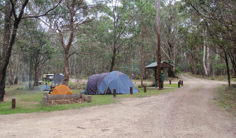 Native Dog campground - Tourism Adelaide