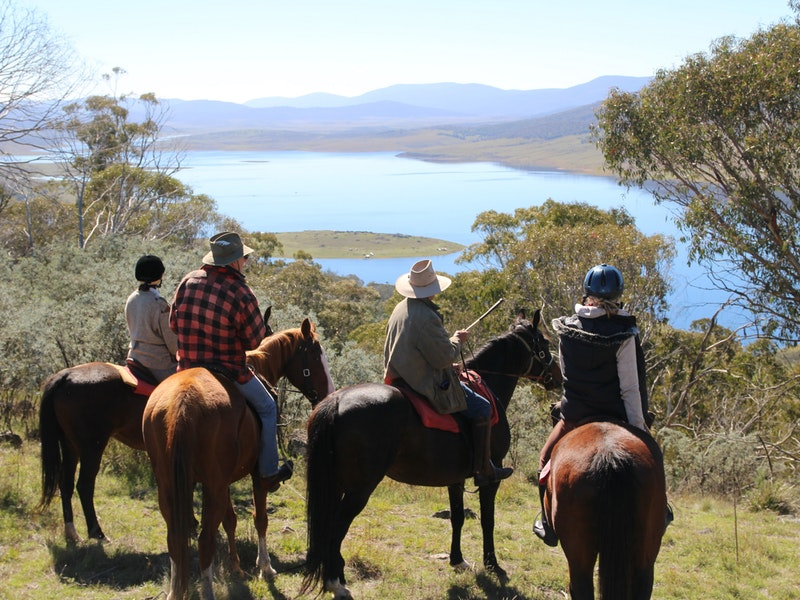Reynella Homestead and Horseback Rides - Tourism Adelaide