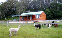 Moorallie Cottage Farm Stay - Tourism Adelaide