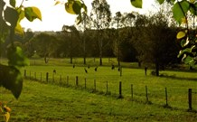 Stone Cottage Mittagong - Tourism Adelaide