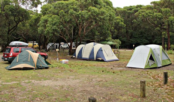 Pretty Beach Campground Murramarang National Park - Tourism Adelaide