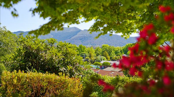 Greatview Holiday Spa Retreat for Couples - Tourism Adelaide