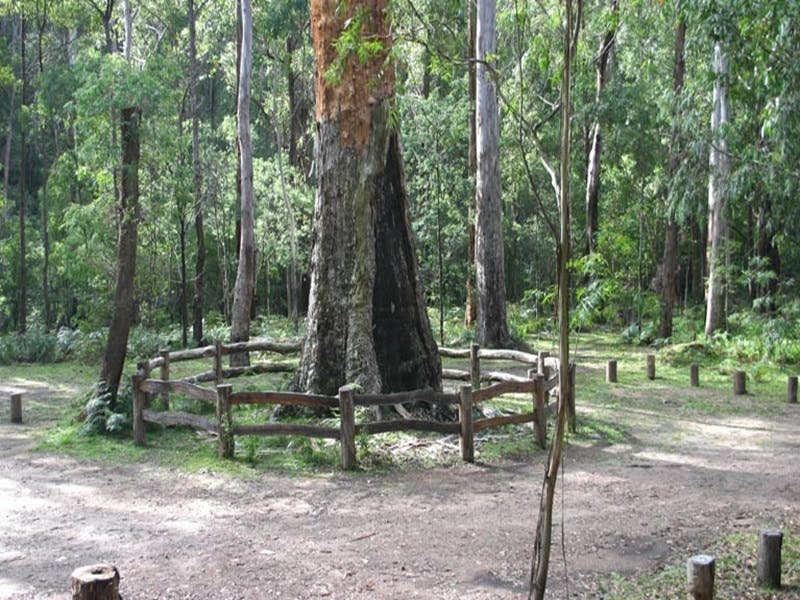 Six Mile Creek campground - Tourism Adelaide