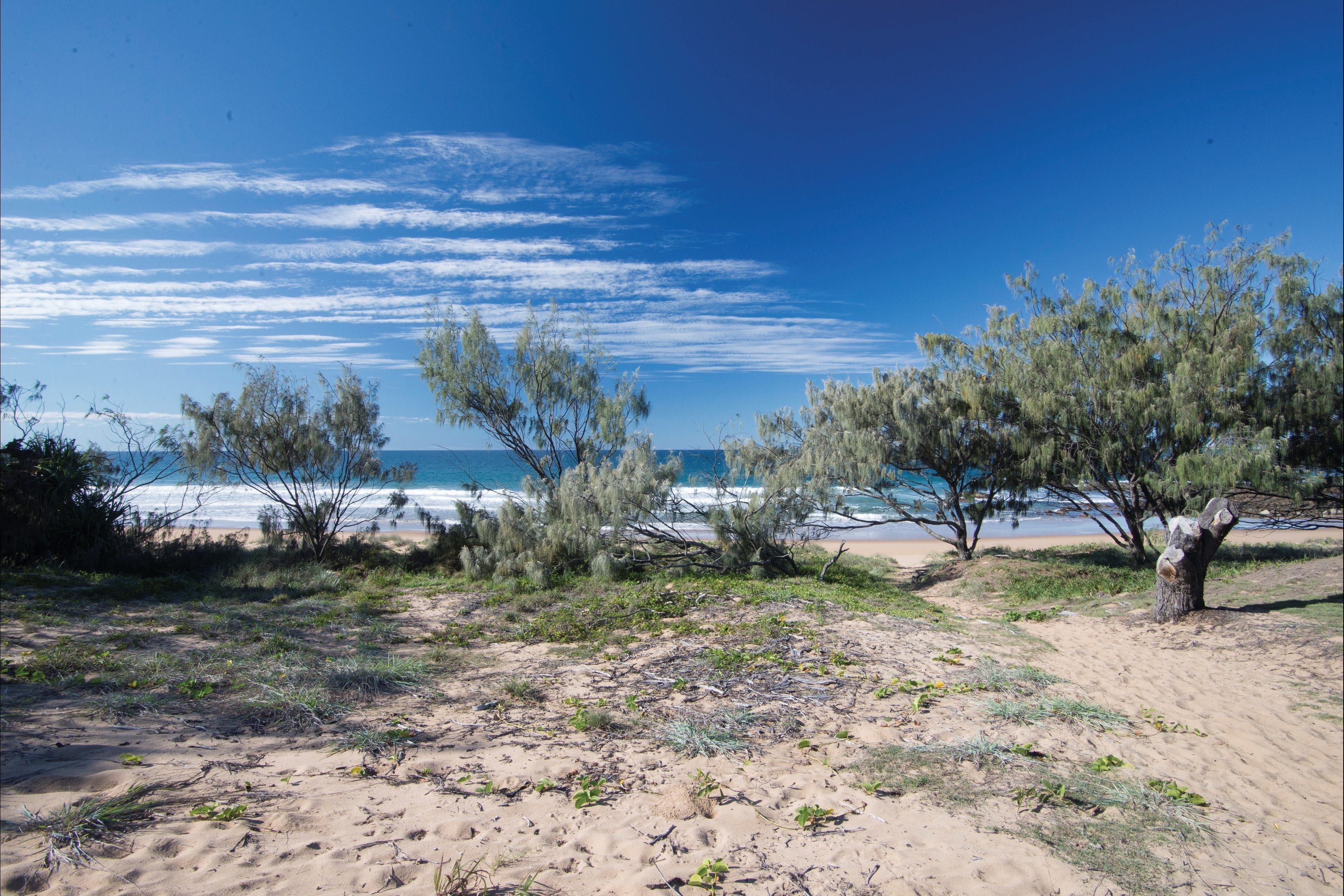 Deepwater National Park camping - Tourism Adelaide