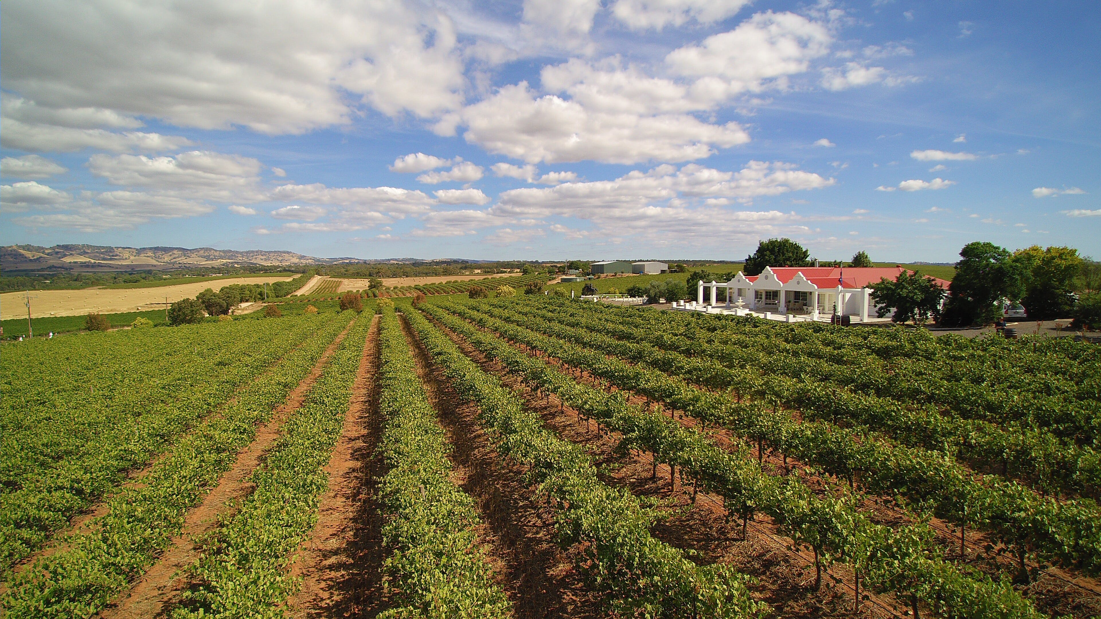 1837 Barossa Luxury Vineyard Cottages - Tourism Adelaide
