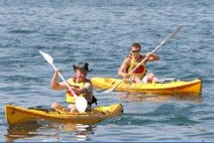 Manly Kayaks - Tourism Adelaide