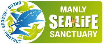 Manly SEA LIFE Sanctuary - Tourism Adelaide