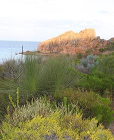 Meelup Trail - Tourism Adelaide