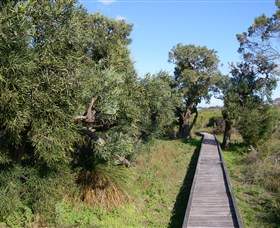 Kepwari Trails Wetland Wonderland - Tourism Adelaide