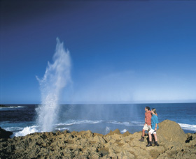 The Blowholes Carnarvon - Tourism Adelaide