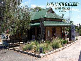 Rain Moth Gallery - Tourism Adelaide