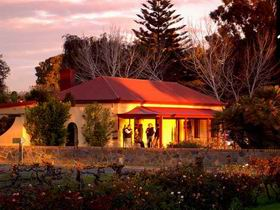 Elderton Wines - Tourism Adelaide
