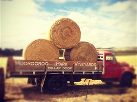 Moorooroo Park Vineyards - Tourism Adelaide