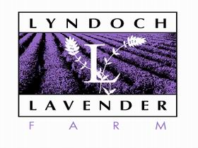 Lyndoch Lavender Farm and Cafe - Tourism Adelaide