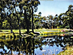 Smithton Country Club - Tourism Adelaide