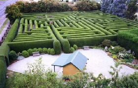 Westbury Maze and Tea Room - Tourism Adelaide