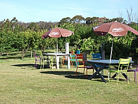 Cerise Brook Orchard  Family Golf - Tourism Adelaide