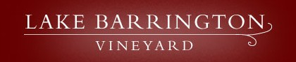Lake Barrington Estate Vineyard - Tourism Adelaide