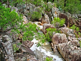 Crows Nest National Park - Tourism Adelaide
