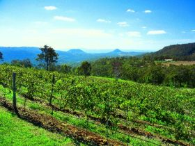 Preston Peak Wines - Tourism Adelaide