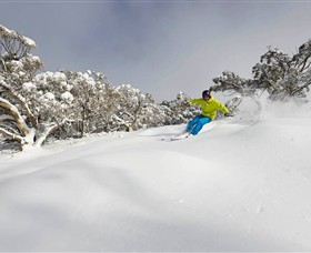 Mt Buller and Mt Stirling Alpine Resort - Tourism Adelaide