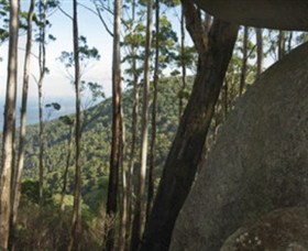 Gulaga National Park - Tourism Adelaide
