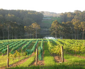 Tilba Valley Wines - Tourism Adelaide