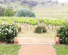 Brindabella Hills Winery - Tourism Adelaide