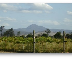 Ironbark Ridge Vineyard - Tourism Adelaide