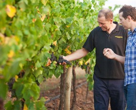 Fratin Brothers Vineyard - Tourism Adelaide