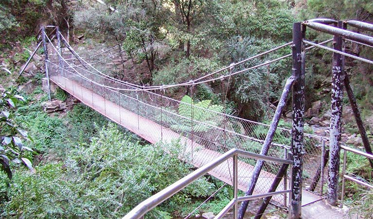 Jenolan River walking track - Tourism Adelaide