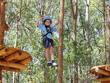 TreeTops Newcastle - Tourism Adelaide