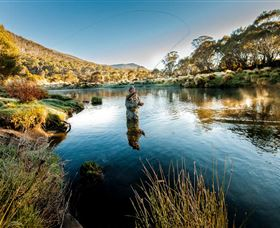 Fly Fishing Tumut - Tourism Adelaide