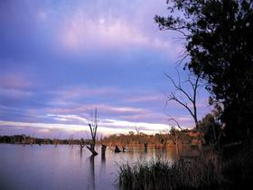 Loch Luna Game Reserve and Moorook Game Reserve - Tourism Adelaide