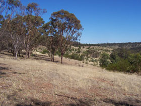 Onkaparinga River National Park - Tourism Adelaide