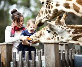 Taronga Western Plains Zoo Dubbo - Tourism Adelaide