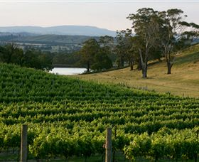 Granite Hills Winery - Tourism Adelaide