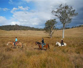 Chapman Valley Horse Riding - Tourism Adelaide