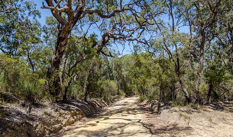 Howes trail - Tourism Adelaide