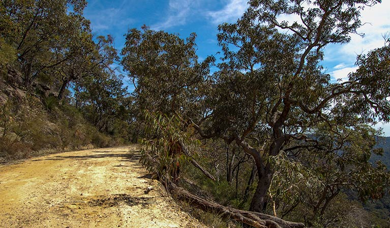 Parr State Conservation Area - Tourism Adelaide