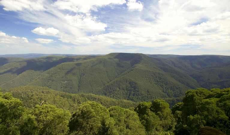 Barrington Tops National Park - Tourism Adelaide