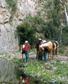 Yarramba Horse Riding - Tourism Adelaide