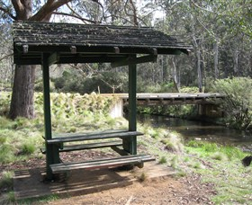 Barrington Tops State Forest - Tourism Adelaide